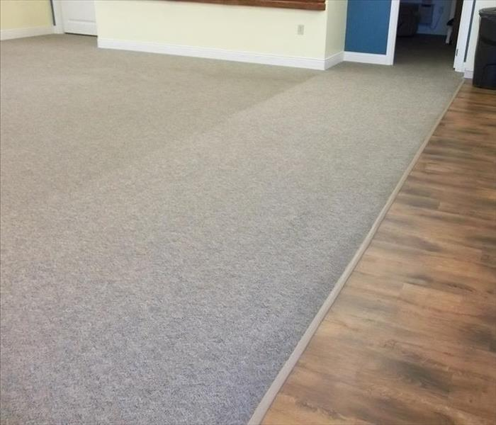 Carpet Cleaning as a Result of Water Loss After