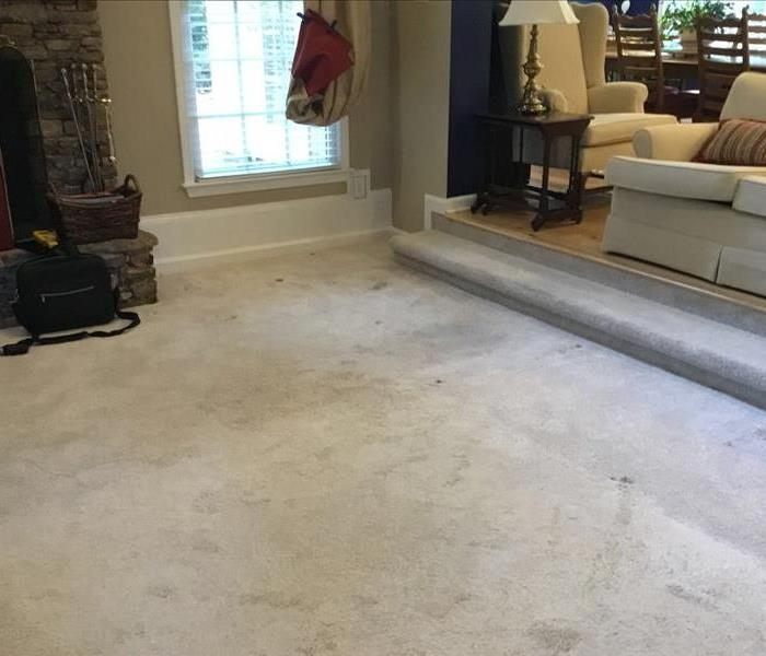 Wet Living room carpet