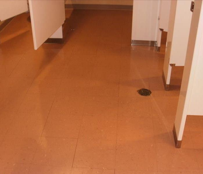 Flooded ladies room floor