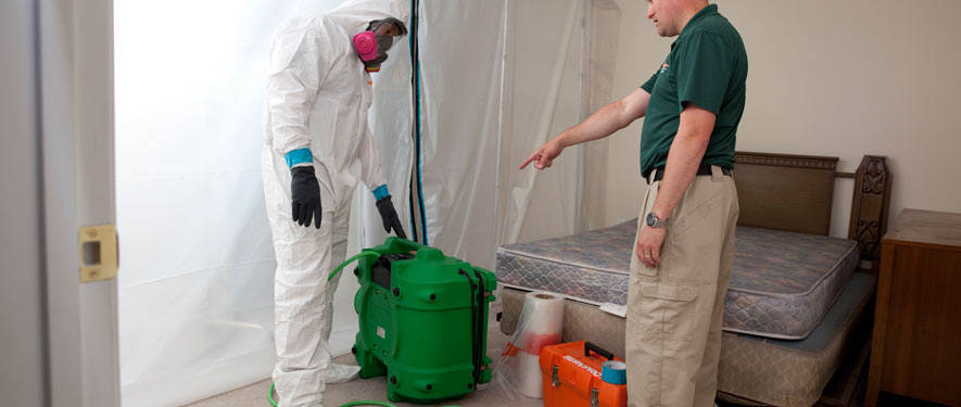 Lawrenceville, GA mold removal process